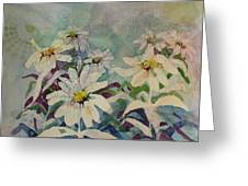 Crazey Daisies Greeting Card