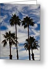 Crazy Cloud Palms Greeting Card