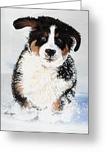 Crazy For Snow Greeting Card