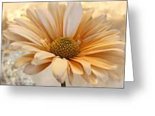 Creamsicle Martini Greeting Card