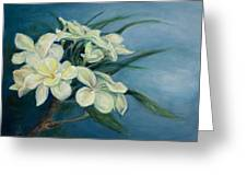 Creamy Plumeria Greeting Card