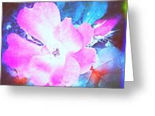 Creative Energies Greeting Card
