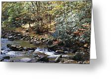 Creek 12 Greeting Card