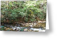 Creek 13 Greeting Card