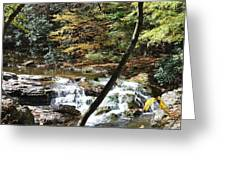 Creek 8 Greeting Card
