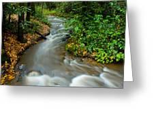 Creek After Big Storm Greeting Card