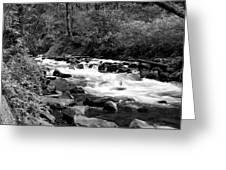 Creek At Bridal Falls Greeting Card by John Winner