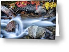 Creek At North Lake Ca_1 Greeting Card