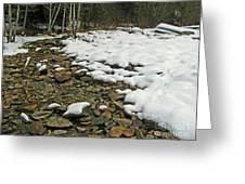 Creek Bed Greeting Card