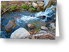 Creek Entering Andreas Canyon In Indian Canyons-ca Greeting Card