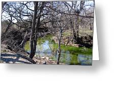 Creek In North Texas Greeting Card