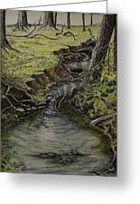 Creek  Greeting Card by Janet Felts