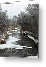 Creek Mood Greeting Card