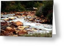 Creek No Paddle Greeting Card