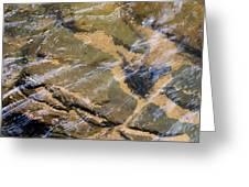 Creek Reflections Greeting Card