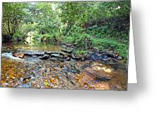 Creekside 2 Greeting Card