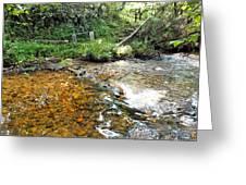 Creekside 4 Greeting Card