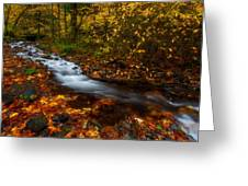 Creekside Colors Greeting Card