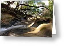 Creekside Sunrise Greeting Card