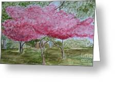 Crepe Myrtles Greeting Card by Katie Spicuzza