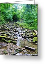 Cresheim Creek Greeting Card