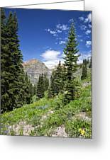 Crested Butte Flowers Greeting Card
