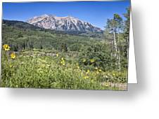 Crested Butte Scenery Greeting Card