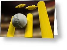 Cricket Ball Hitting Wickets Night Greeting Card