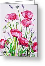 Crimson Poppies Greeting Card