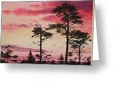 Crimson Sunset Splendor Greeting Card by James Williamson