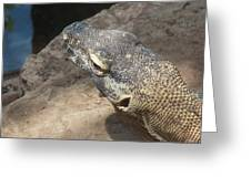 Crocodile Monitor Greeting Card