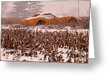 Crop Rotation--vets This Year Greeting Card by David Bearden