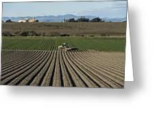 Crops In San Luis Obispo County Greeting Card