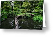 Crossing The Pond Greeting Card