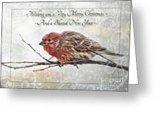 Crouching Finch Christmas Greeting Card Greeting Card