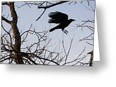 Crow In Flight Greeting Card