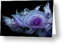 Crown Jellyfish Greeting Card