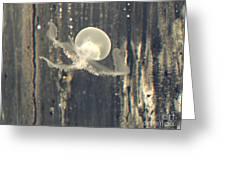 Crstal Jellyfish Greeting Card