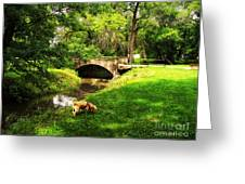 Cruz At Deer Creek Bridge Dwight Il Greeting Card