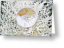 Crystal Ball Project 87 Greeting Card