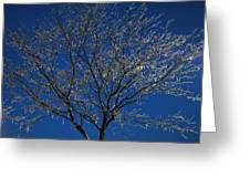 Crystal Blue Greeting Card