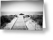 Crystal Cove Overlook Black And White Picture Greeting Card
