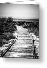 Crystal Cove Wooden Walkway In Black And White Greeting Card