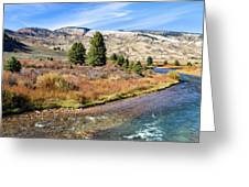 Crystal Creek In The Gros Ventre Greeting Card