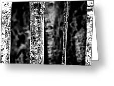 Crystal Pillars Greeting Card by Brad Brizek