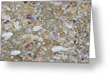 Crystal Shells Greeting Card