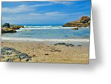 Crystal Waters - Port Macquarie Beach Greeting Card