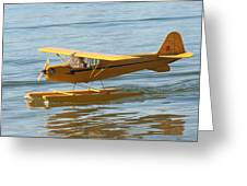Cub On Floats Greeting Card