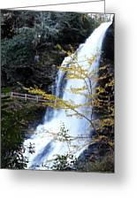 Cullasaja's Dry Falls Greeting Card