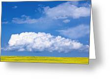 Cumulus Clouds Building Over Canola Greeting Card